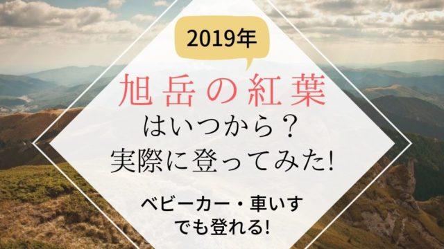 旭岳が紅葉した様子2019年