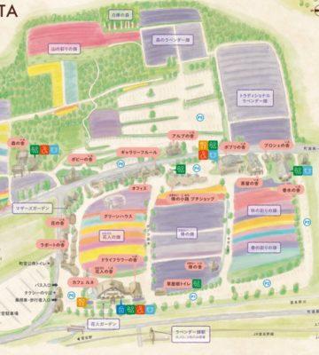 ファーム富田のマップ