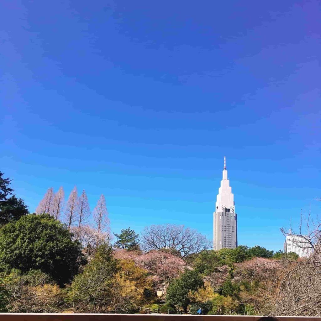 スタバからの新宿の景色